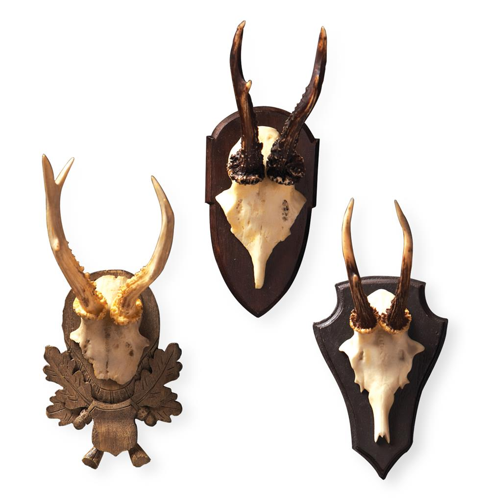 antler wal mounts
