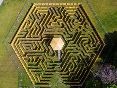 Full-Day Maze Entry