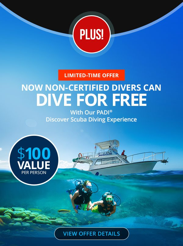 Dive For Free