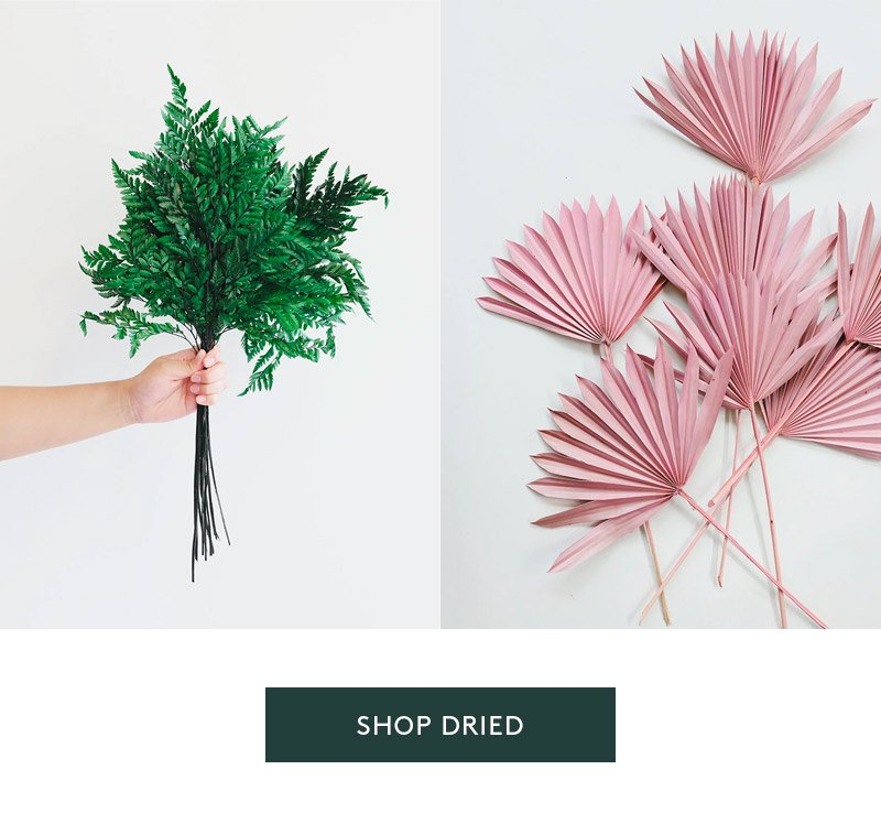 Preserved greenery and Dried pink palms