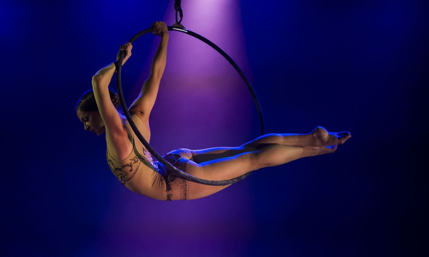 Up to 36% off tickets to 'Circus 1903' at Royal Festival Hall