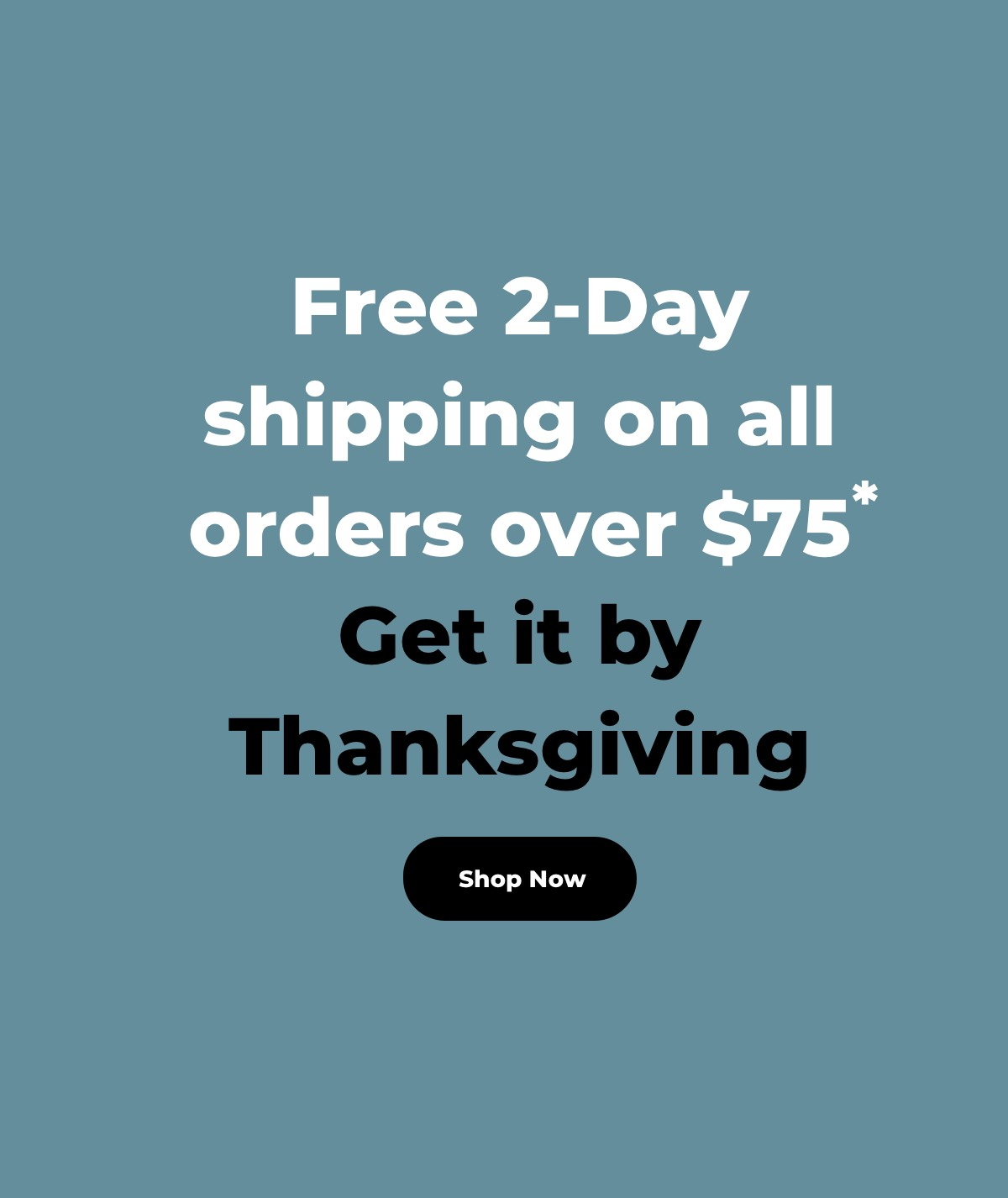 free 2 day shipping offer Image