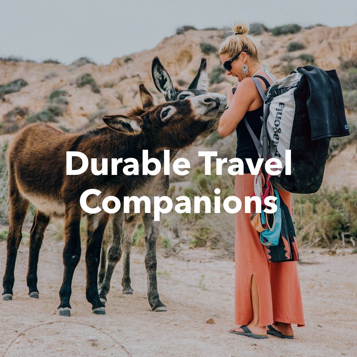 Durable Travel Companions
