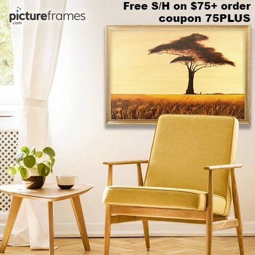 pictureframes-com-free-shipping-coupon.jpg