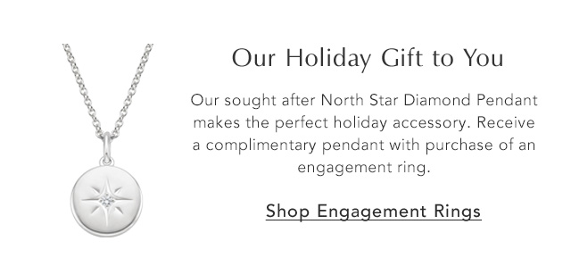 Our Holiday Gift to You