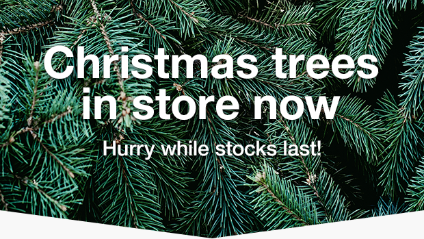 Wickes Christmas Trees Are Now In Store Milled