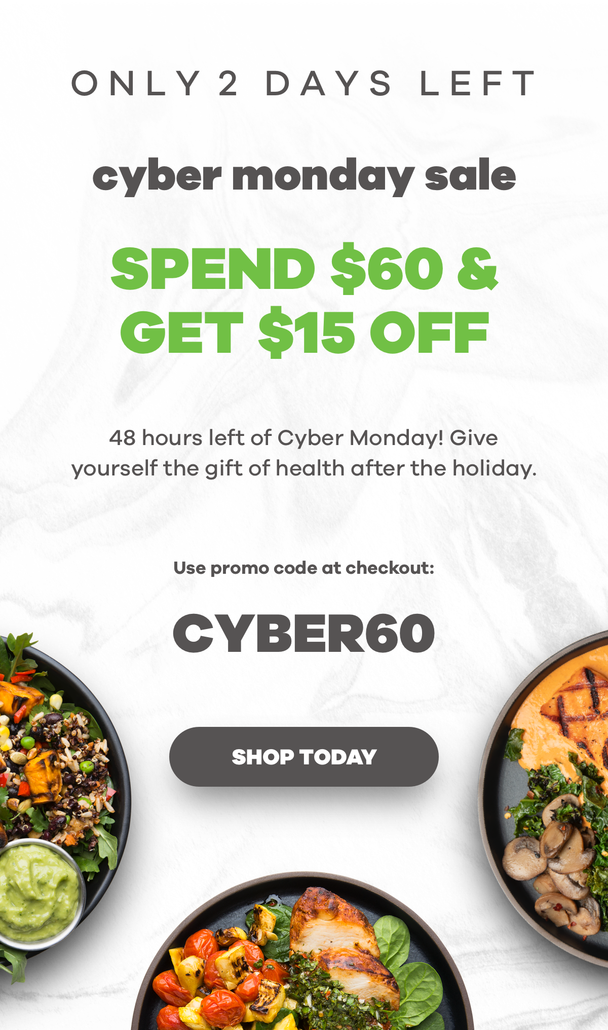 Snap Kitchen 48 Hours Left Of Cyber Monday Milled