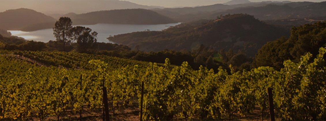 Pritchard Hill Winery Map