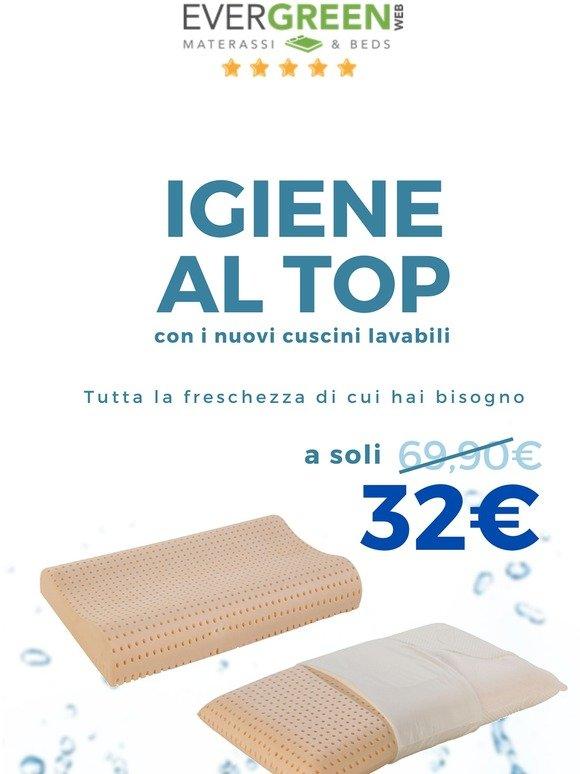 Evergreen Cuscini.Evergreenweb It Aspirapolvere Per Materassi Milled