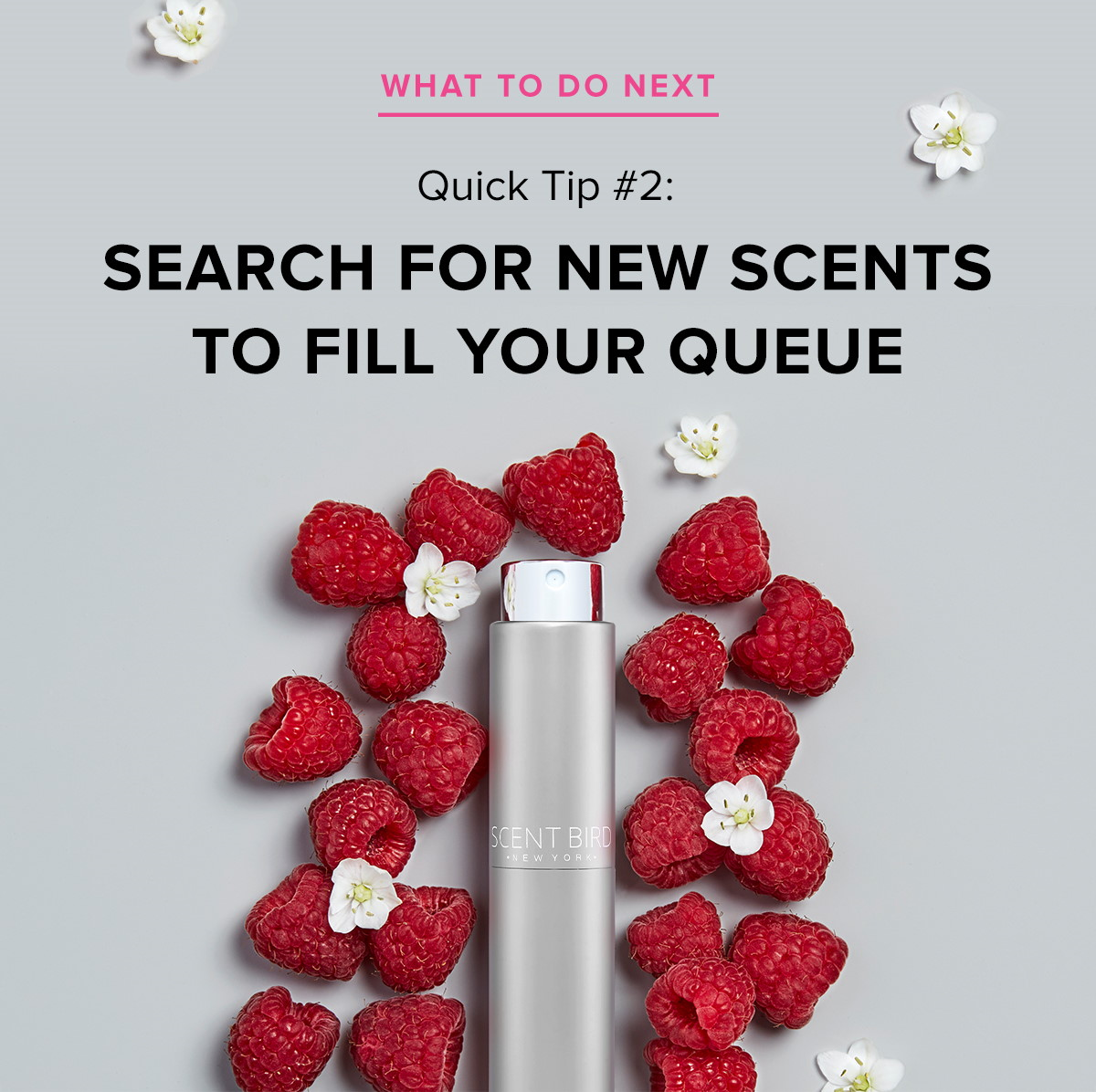 Scentbird Take This Quiz To Find Your Signature Scent Milled